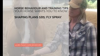 Shaping Plans 101: How to Make One (And How to Teach Your Horse to Accept Fly Spray)