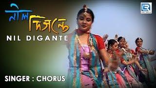 Nil Digante Oi Phuler Agun Laglo | Rabindra Sangeet | Full HD Video