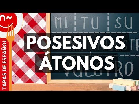 Los posesivos - Possessive Pronouns in Spanish (1/2)