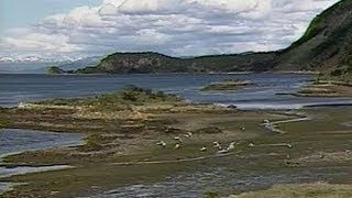 Argentina: Tierra del Fuego