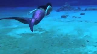 Девушка одевает хвост русалки и опускается на дно моря! :-)(, 2014-08-25T12:42:05.000Z)