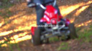 Pocket Bikes, Mini Bikes - Cobra S4 50cc Mini 4-Wheeler Quad