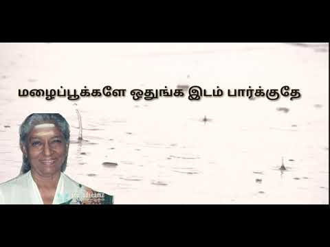 Pon vaanam panneer thoovuthu ineram  song tamil lyrics cover by sowmya & varun
