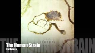 Cordyceps - The Human Strain (INSTRUMENTAL PREVIEW) - Andrew Baena
