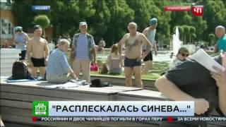 Журналиста НТВ ударил в челюсть пьяный. День ВДВ 2017