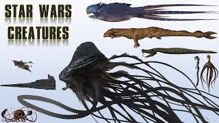 20 Biggest Star Wars Monsters | Explained