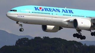 福岡空港の強風着陸! JAL ANAいろいろ パート2