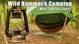 Woodland Hammock Camping wİth a Special Guest. - Dutch oven Ribs