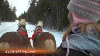 Driving A Horse Drawn Sleigh