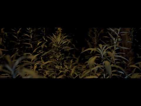 ReTo - WRZASK (prod. SecretRank) Official Video