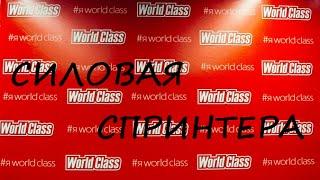 Силовая тренировка в World Class