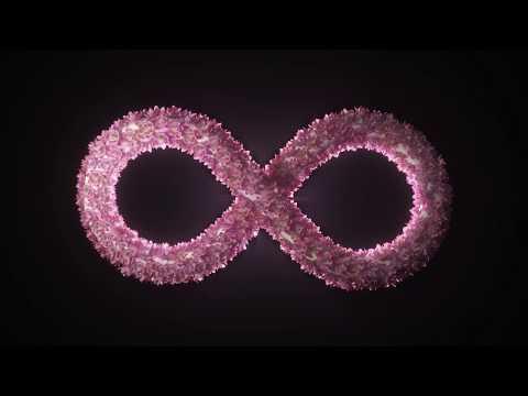Crystal Lake Circles (official Video)