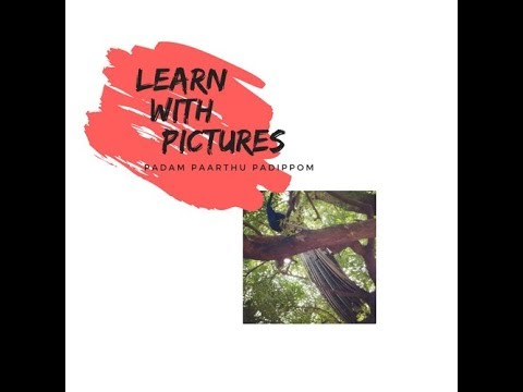 Download Learn with pictures - 4 | Peacock