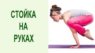 Стойка на руках: бакасана для начинающих. Как сделать стойку на руках – освоение бакасаны. Yogalife