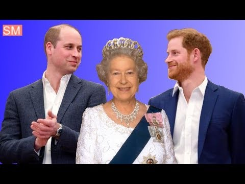 Prince William And Prince Harry Defend The Queen&39;s Decision