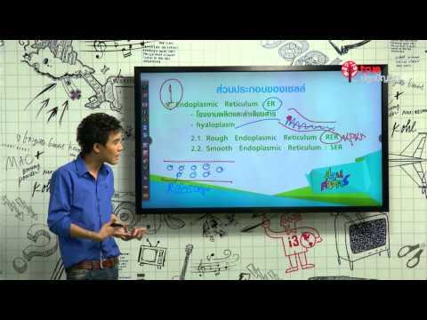 สอนศาสตร์ ชีววิทยา : ตอน ชีววิทยาของเซลล์