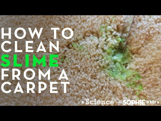 How To Get Slime Off Clothes Carpet Sofa Hair