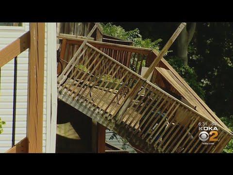 Man Survives Bobcat Attack In Venango County - YouTube