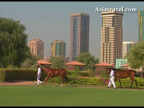 Zabeel Horse Racing Stables, Dubai by Asiatravel.com