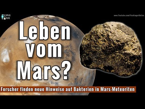 Leben auf dem Mars? Wissenschaftler finden mutmaßliche Bakterien in Mars-Meteoriten