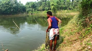 Net Fishing | Catching Fish With Cast Net | Net Fishing in the village (Part-122)