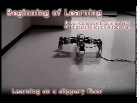 Motion learning of simulated and real robots with DCOB