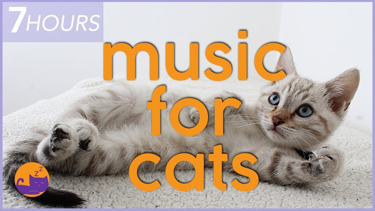 Calming Music for Cats with Anxiety - DEEP Soothing Anxiety Relief (7 Hours)