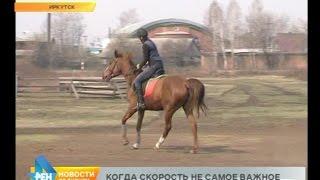 Лаборатория спорта: дистанционные конные пробеги
