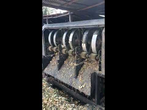 Areca nut (betel nut, Supari) peeling machine or Automation