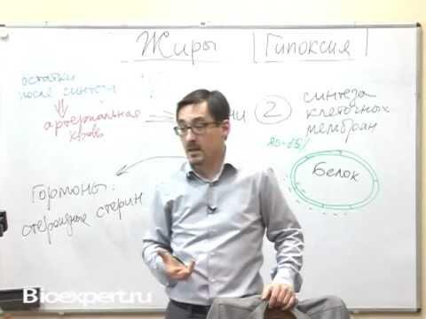 врач диетолог заболотный константин борисович технология здоровья