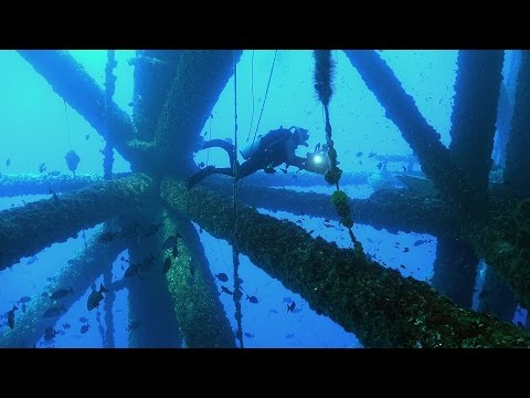 Oil Platform Diving! | JONATHAN BIRD'S BLUE WORLD