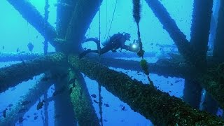 Oil Platform Diving! | JONATHAN BIRD'S BLUE WORLD thumbnail