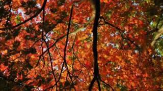 Herbstlied by Zupfgeigenhansel