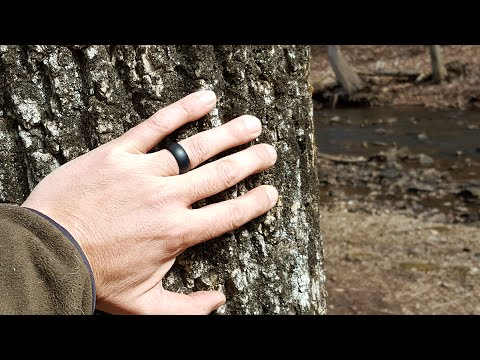 Review of the BULZi Tactical Wedding Ring For Those On The Go