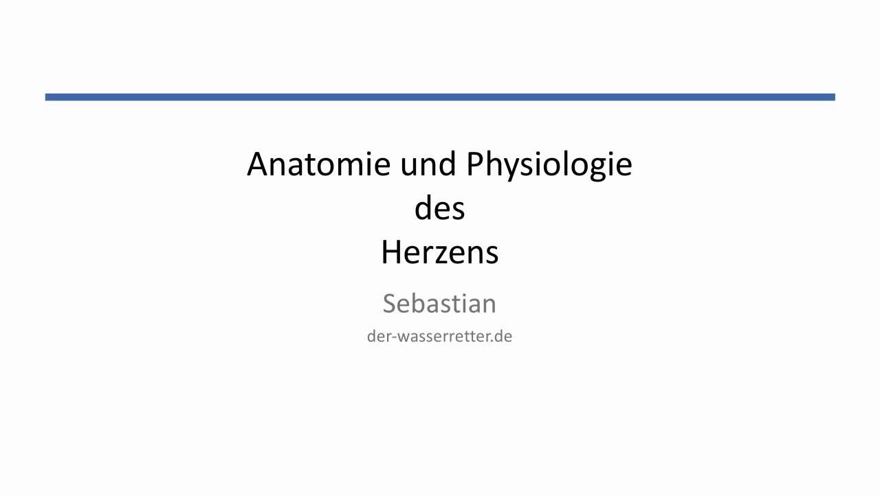 Charmant Anatomie Und Physiologie 1 Und 2 Bilder - Anatomie Ideen ...