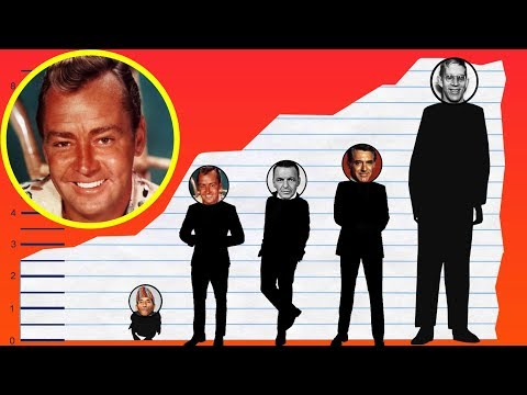 How Tall Is Alan Ladd? - Height Comparison!