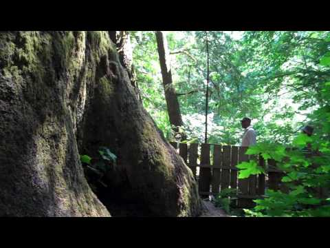 The Official Sooke, British Columbia, Tourism Video