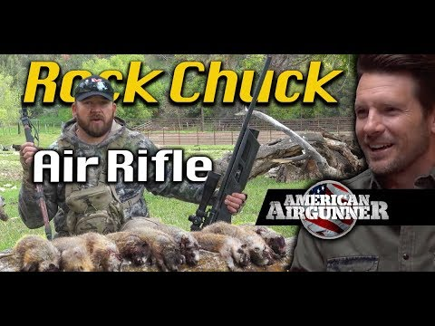 Air Rifle Hunting Rock Chuck with Umarex Gauntlet : American Airgunner TV