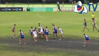 Senior Practice Match Highlights vs Sandringham