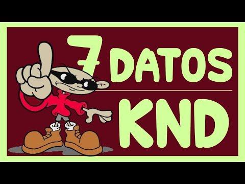 KND: LOS CHICOS DEL BARRIO 7 DATOS INTERESANTES / TOON CENTER / PROVINCIA STUDIOS