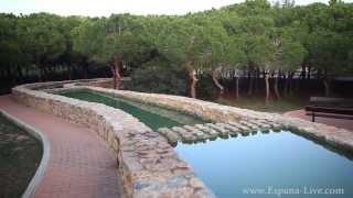 Испания парк в Торревьеха Ла Мата Молино Molino del Aqua