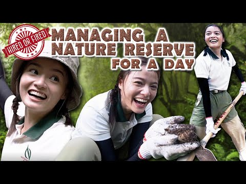 Hired Or Fired: Managing A Nature Reserve For A Day