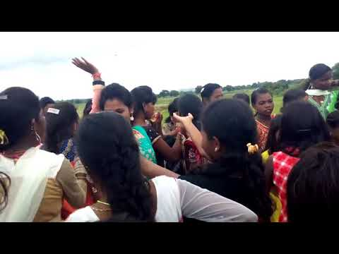 Jiyutia Dance Desi Girl Village In Odisha Sambalpuri Dance