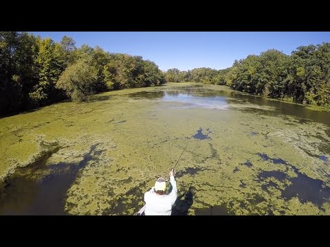FLW Fishing 101 | How to Fish a Grass Mat