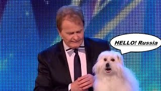 Говорящая собака, талант, все в шоке, судьи в восторге
