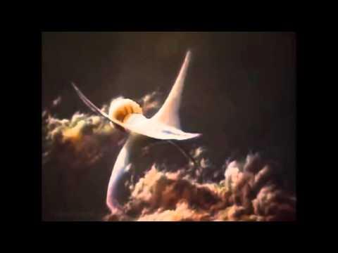 Cosmos - Life on Gas Giants