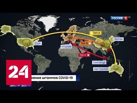 Вакцину сделают только через год: поиск лекарств против COVID-19 продолжается - Россия 24