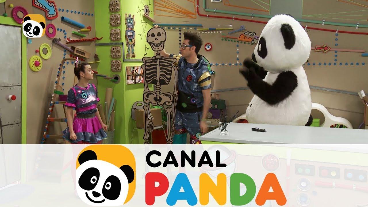 Crea Un Esqueleto A Tu Medida Canal Panda Youtube
