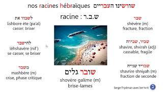 Racineshbr