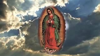 Virgen De Guadalupe - Musica Catolica